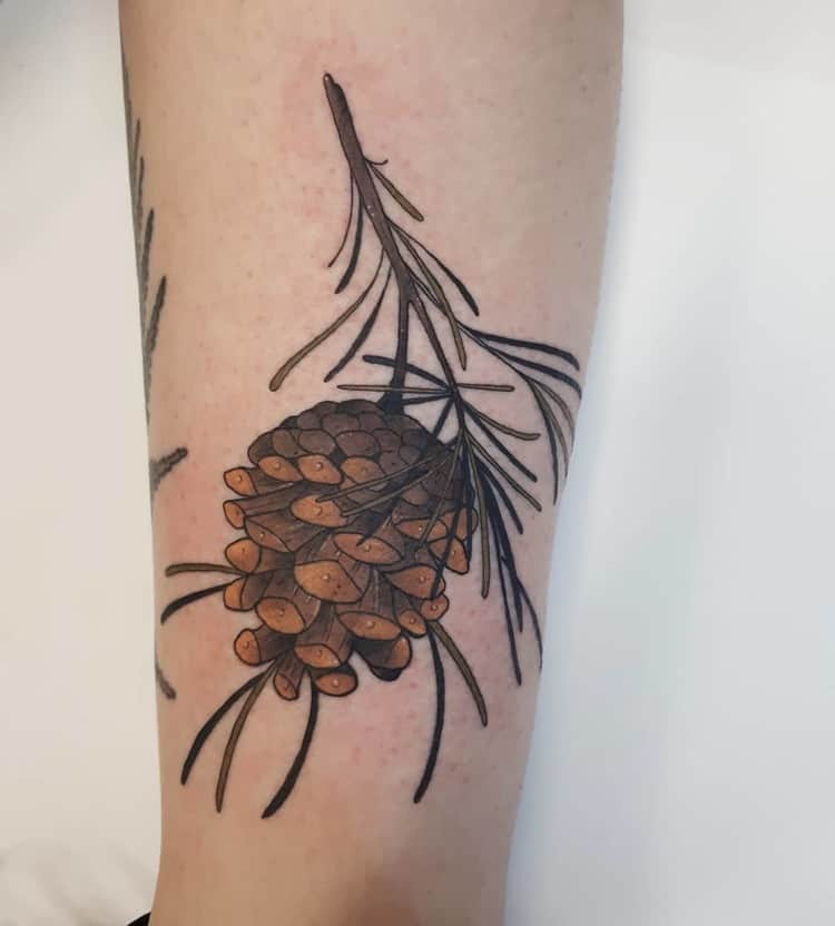 Pine Cone Tattoo by diana_tattoos