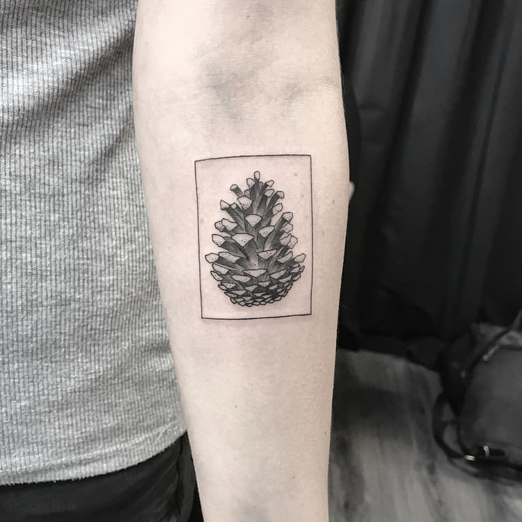 Pine Cone Tattoo by simondiamant