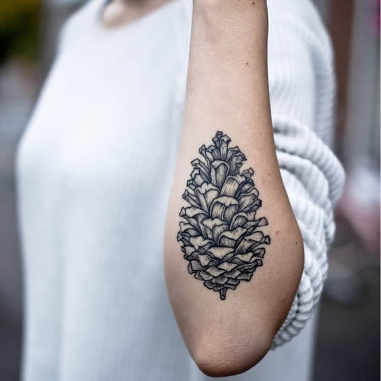 Pine Cone Tattoo by tuulirongastattoo