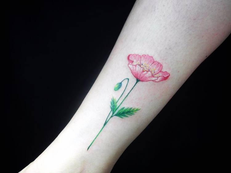 Poppy Tattoo by ednana4