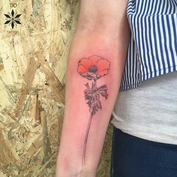 Anemone Tattoo by tio_tattoo