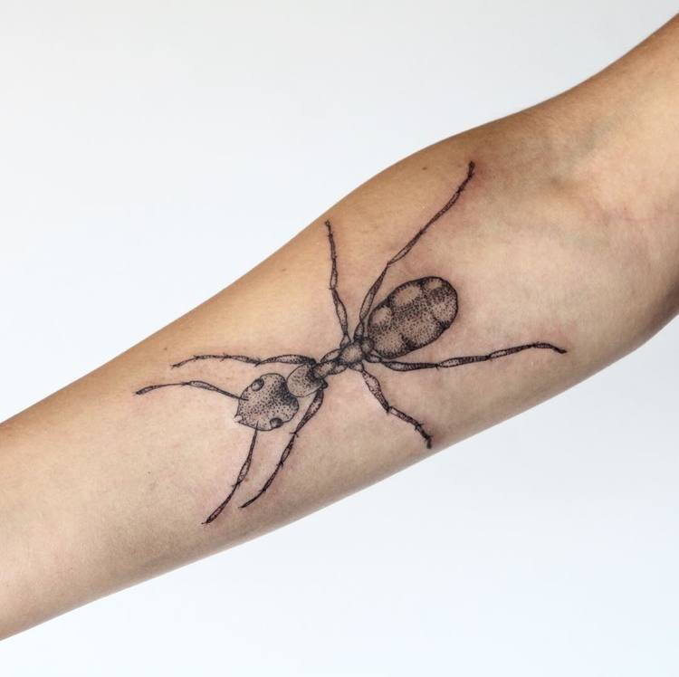 Ant Tattoo by finerach