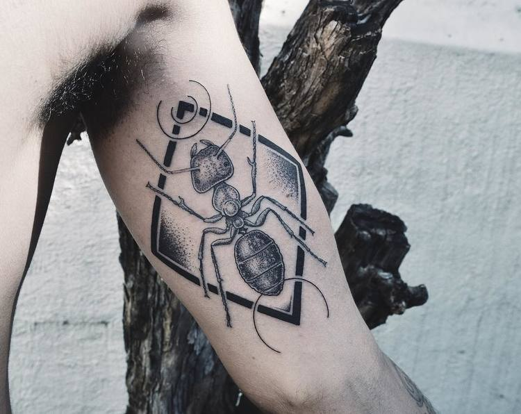 Ant Tattoo by metamorphosistattoo