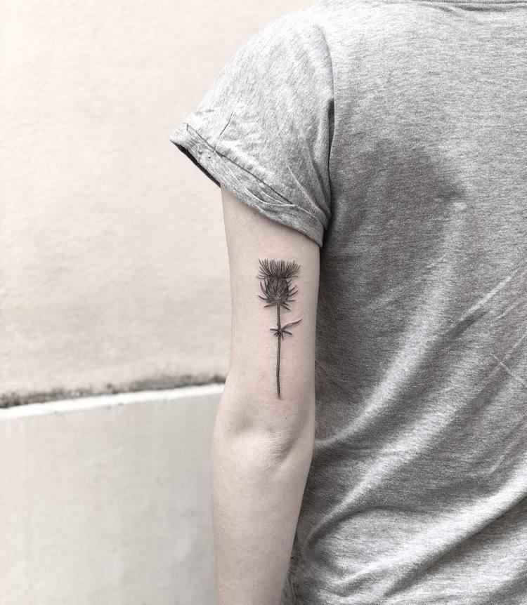 Thistle Tattoo by Mary Tereshchenko